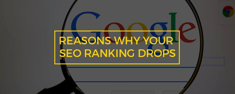 6 Reasons Why Your SEO Ranking Drops